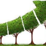 ده راه برای رشد ارگانیک کسب و کار شما