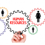 نقش مدیریت منابع انسانی در توسعه رهبری